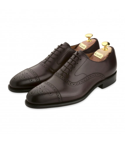 Oxford Brogue with perforated toe-cap Newton 316 - Brown