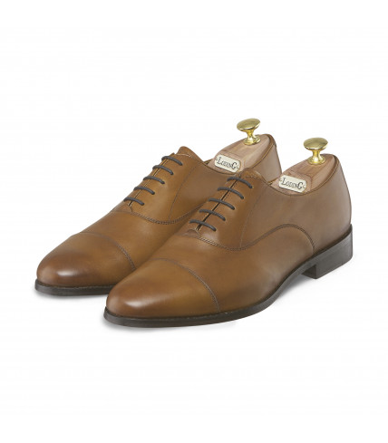 Round toe-cap Oxford Brighton 301
