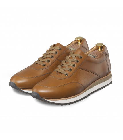 Sneakers marron Miami 1009